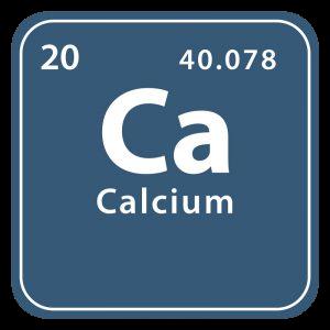 Mineralet kalk (calcium)
