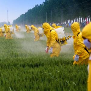 Brug af pesticider forurener vores grundvand og vores sundhed.