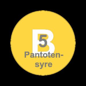 Vitamin b5 - Pantotensyre
